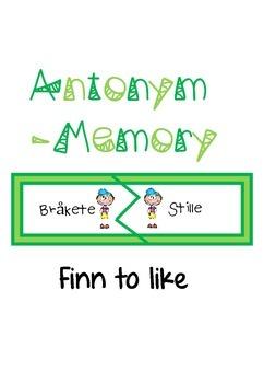 AntonymMemory