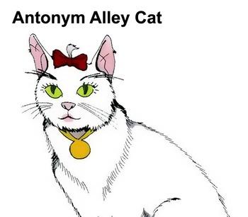 Antonyms, Homonyms & Synonyms Song (MP3)
