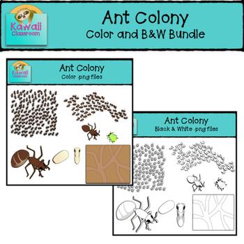 Ants Clipart Bundle (Color and B&W)
