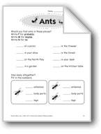 Ants (Thinking Skills)