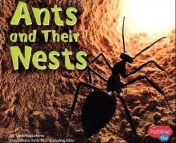 Ants and Their Nests Amazing Words PPT