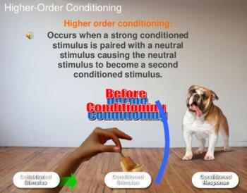 Ap Psychology Myers Unit 6 Learning
