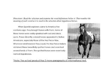 Animal:Appaloosa Horses of Nez Perce +10 Questions Definit