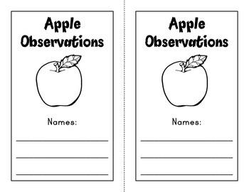 Apple Experiment (Kindergarten and 2nd Grade)