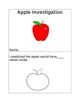Apple Investigation