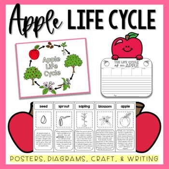 Apple Life Cycle Packet & Mini Book
