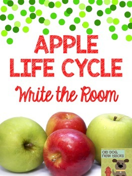 Apple Life Cycle Write the Room