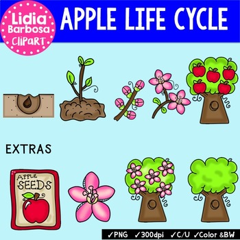 Apple Life Cycle and Bundle { Clip Art for Teachers }