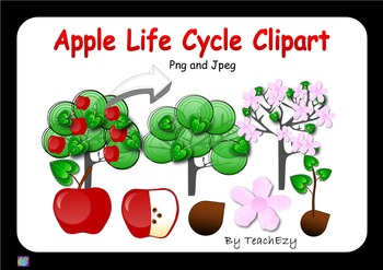 Apple Lifecycle Clipart