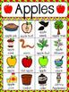 Apple Vocabulary Cards