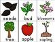 Apples, Apples , Everywhere Activity Unity