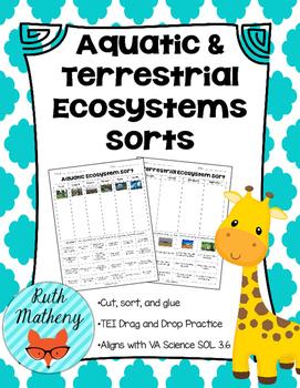 Aquatic & Terrestrial Ecosystems Sorts - VA Science SOL 3.6