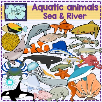 Aquatic animals (Sea and river underwater life) clipart {S