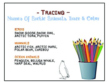 Arctic Animal Trace & Color Freebie with 12 Arctic Animals