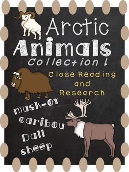 Arctic Animals 1-Close Reading and Creature Report