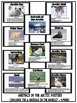 Arctic Animal Adaptations: Booklet, Posters and Reading Co