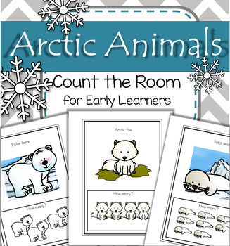Arctic Animals Count the Room