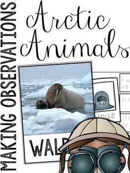Arctic Animals: Making Observations Picture Cards & Station