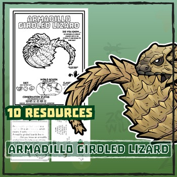 Armadillo Girdled Lizard -- 10 Resources -- Coloring Pages