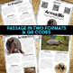 Armadillo: Informational Article, QR Code Research & Fact Sort