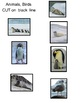 Art Science ... Antarctic Animals (Draw Write Color) 8 pag