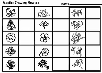 Art Science ... Drawing & Coloring Flowers - Carnations &