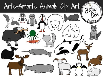Artic, Antartic Animals. (Clip Art)