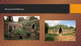 Arts & Humanities Roman Civilization Power point