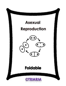 Asexual Reproduction Foldable
