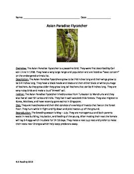 Asian Paradise Flycatcher - Review Article questions vocab