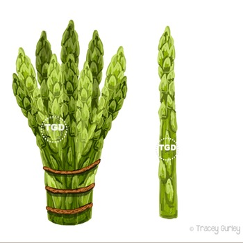 Asparagus Clip Art Printable Tracey Gurley Designs
