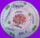 Atomic 3D Model Trio - Fluorine, Oxygen, & Nitrogen