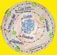 Atomic 3D Model Trio - Oxygen, Nitrogen, & Carbon