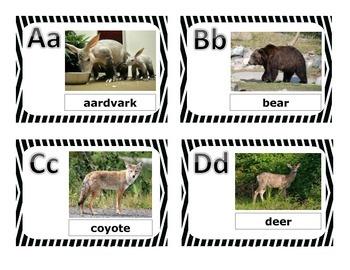 Aurasma Animal Alphabet Cards
