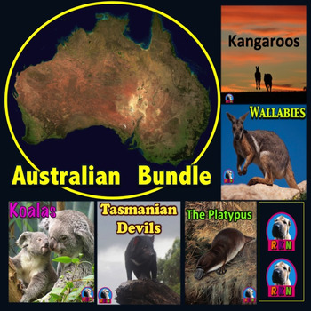 Australian Animals PowerPoint Bundle & Activities