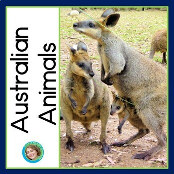 Australian Animals Photo Sentence-Picture Match Reading Center