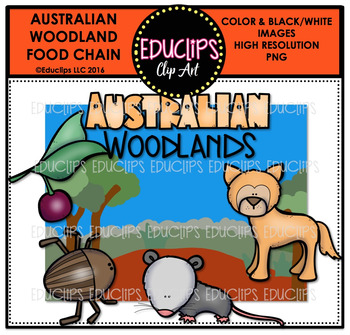 Australian Woodland Food Chain Clip Art Mini Bundle {Educl