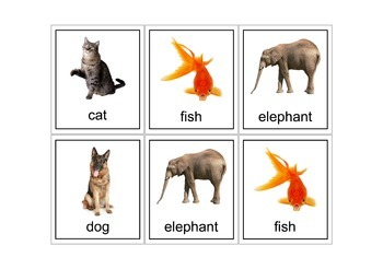 Autism Intervention - Animal Flash Cards - high res