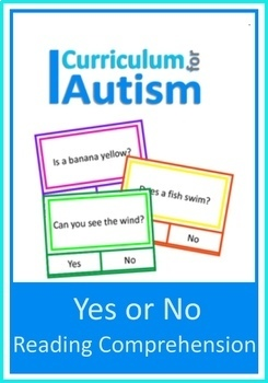 Yes or No Reading Comprehension Cards, Autism Special Education
