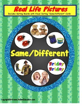 Autism SAME/DIFFERENT Sorting Board with Real-Life Picture