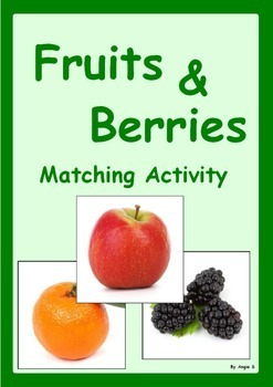 Autism & Special Needs Matching Activity-Fruits and Berries
