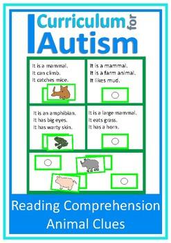 Autism Read & Solve Comprehension Cards Animal Theme, Spec