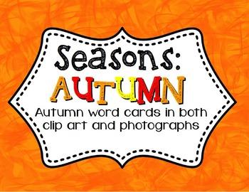 Fall Vocabulary Cards / 3-Part Montessori
