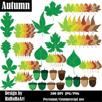 Autumn Acorns and Leaves Digital Clip Art Graphics 84 imag