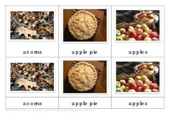 Autumn Montessori Nomenclature Cards