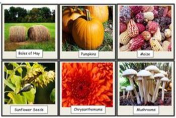 Autumn Photo Flashcard Set
