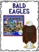BALD EAGLE - nonfiction animal research