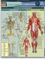 Anatomy Fundamentals: Life Science