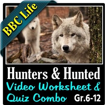 BBC Life - HUNTERS AND HUNTED - Video Worksheet & Quiz Com