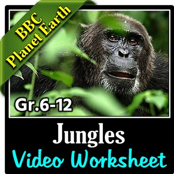 planet earth jungles video questions by tangstar science teachers pay teachers. Black Bedroom Furniture Sets. Home Design Ideas